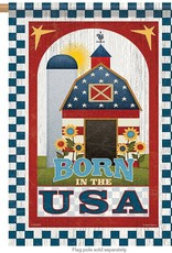 Carson C Patriotic Barn