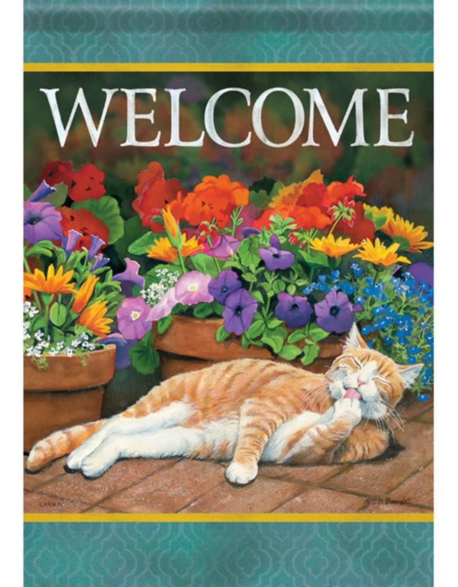 Carson C Sunny Cat GF