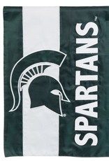Evergreen EV MSU Spartans Stripe