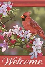 Carson C Pretty Cardinal GF