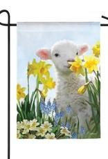 Evergreen EV Spring Lamb GF