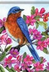 Carson C Sitting Pretty Bluebird GF