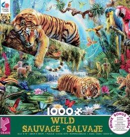 Ceaco 1000pc Wild Tigers