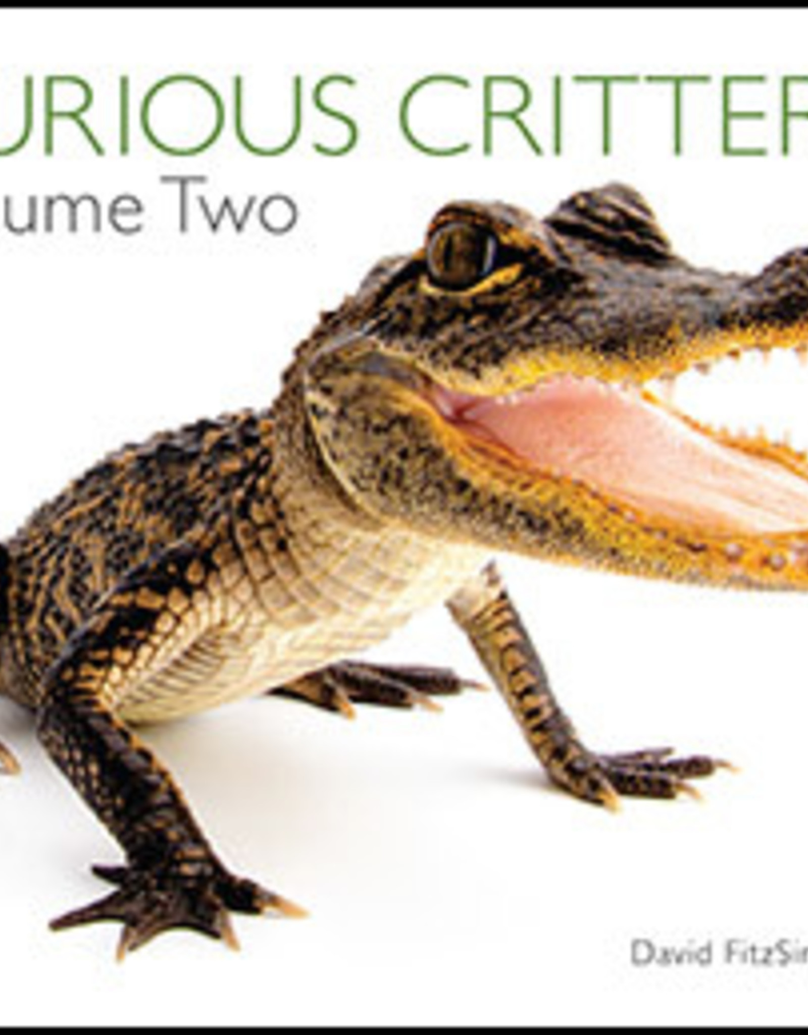 Wild Iris Publishing Curious Critters Volume Two