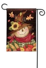 Studio M Autumn Scarecrow GF