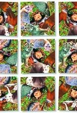 B Dazzle Scramble Squares Foxes