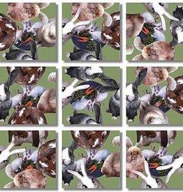 B Dazzle Scramble Squares Bunnies