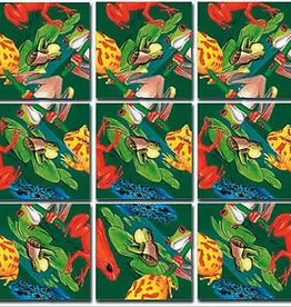 B Dazzle Scramble Squares Frogs