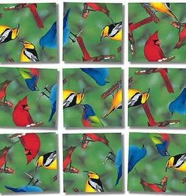 B Dazzle Scramble Squares NA Birds