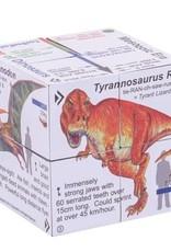 Bigjigs Toys Cube Book Dinosaurs