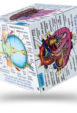 Bigjigs Toys Cube Book Human Body