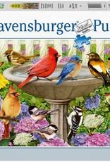 Ravensburger 500pc At The Birdbath LG