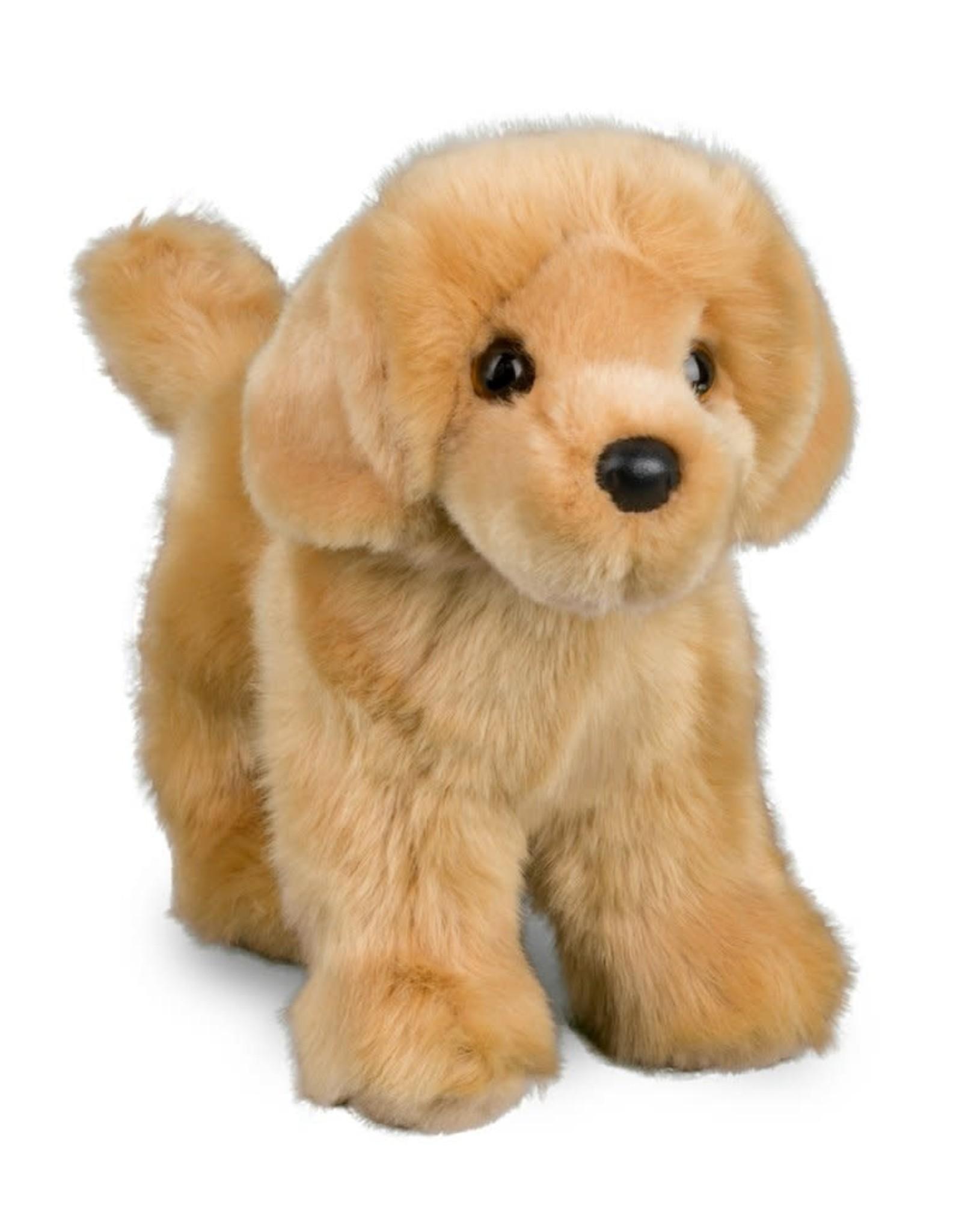 Douglas Dog Golden Retriever Chap