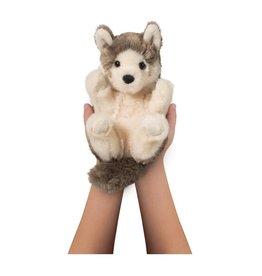 Douglas D Lil Handful Wolf