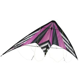 WindnSun Stunt EZ Sport Purple Stripe