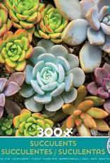 Ceaco 300pc Succulents Green Box