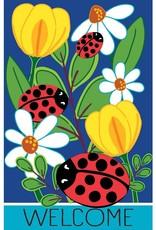 Evergreen EV GF Ladybug Friends