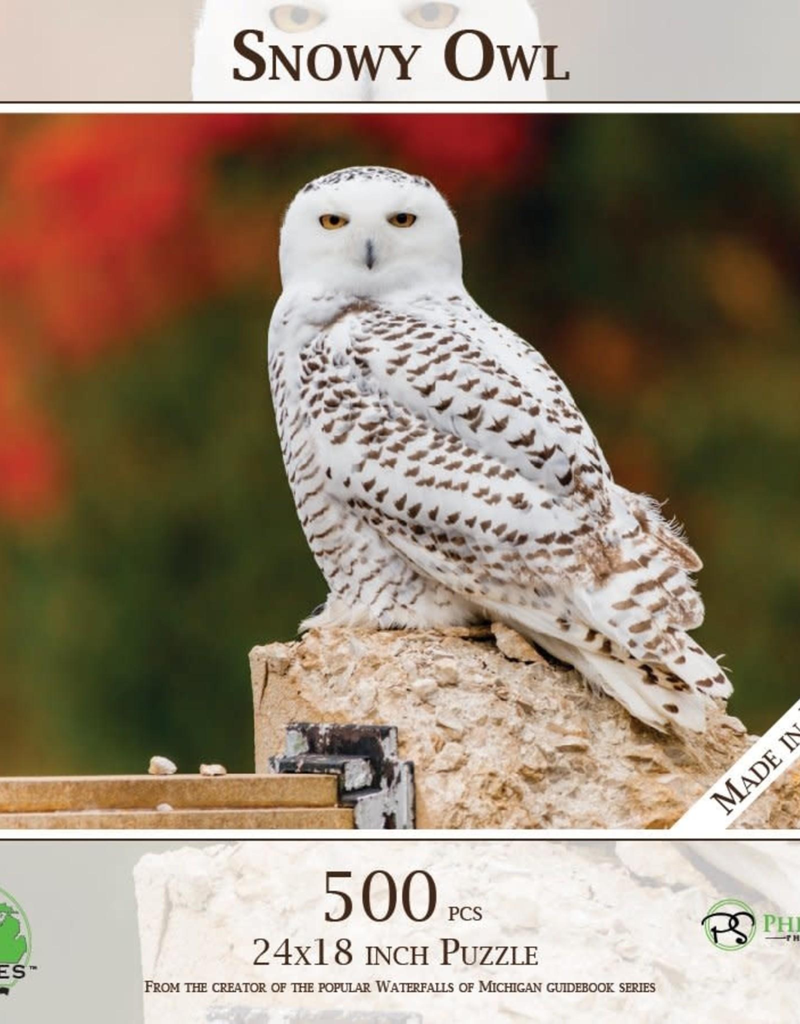 MI Puzzles 500pc Snowy Owl