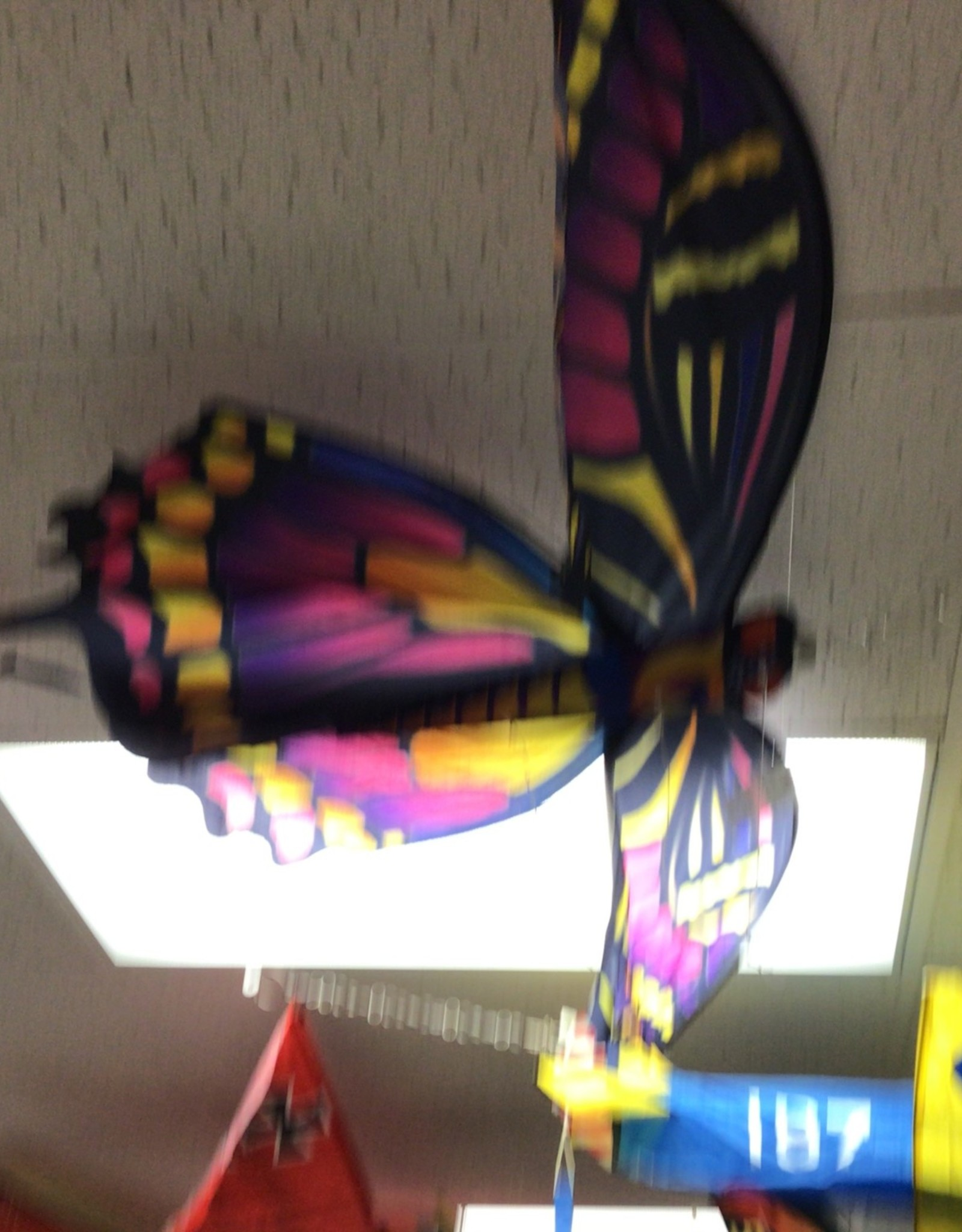 WindnSun Supersize Ultra 3D Butterfly NO LINE INCLUDED
