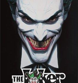 Spin Master Joker Game