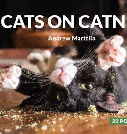 Hachette Cats On Catnip Post Card Book