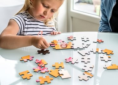 First Jigsaw Puzzles (12-99pc)