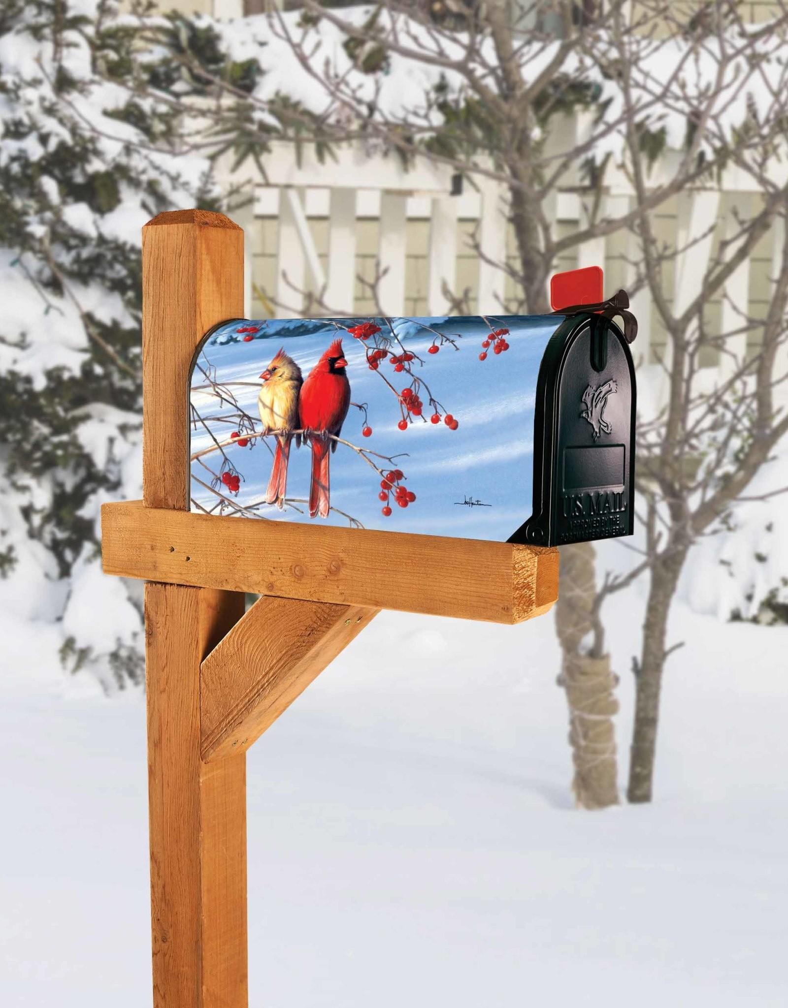Studio M MC Cardinals in Snow