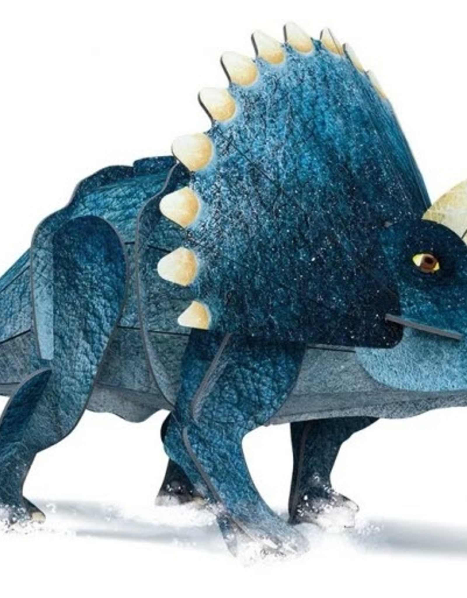 Sassi Triceratops Book And 3D Model