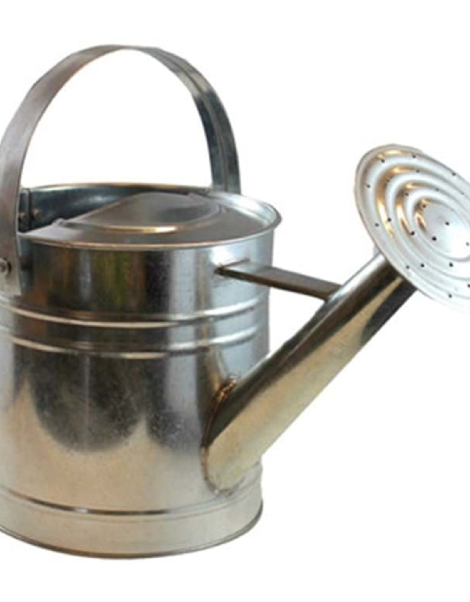 Twigz - Galvanised Watering Can