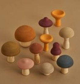 Raduga Grez Raduga Grez - Mushrooms