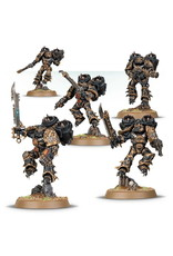 Games Workshop Raptors