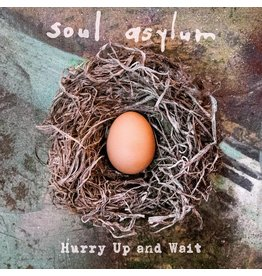 Soul Asylum - Hurry Up and Wait (Record Store Day)
