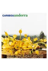 Caribou - Andorra