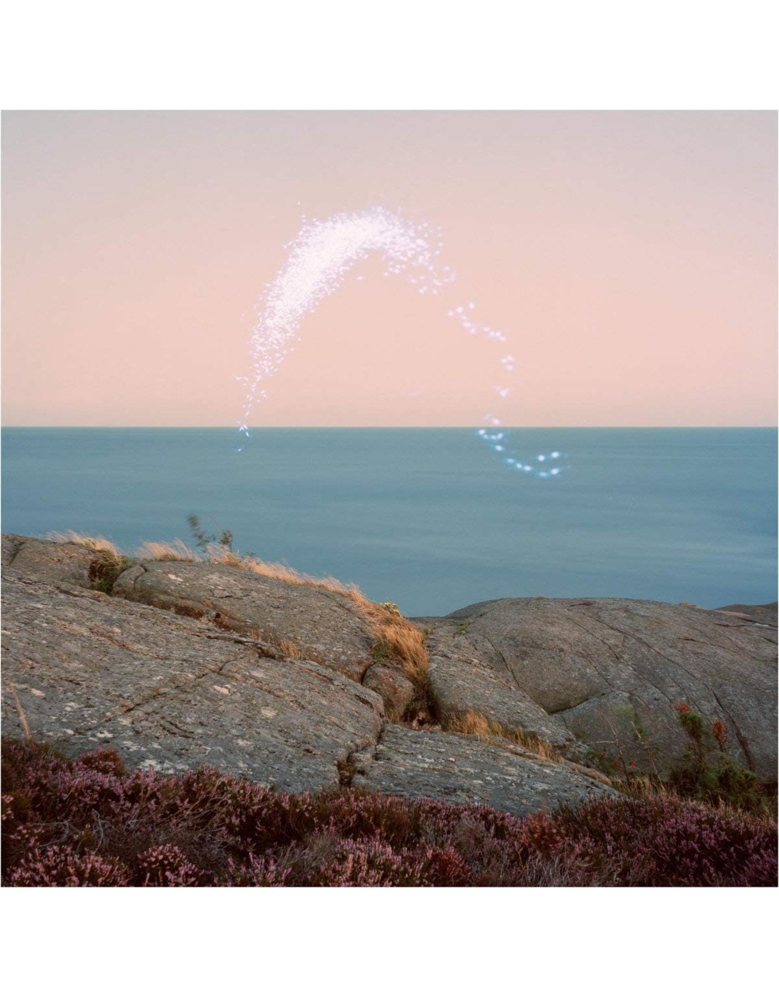 Cassandra Jenkins - An Overview On Phenomenal Nature