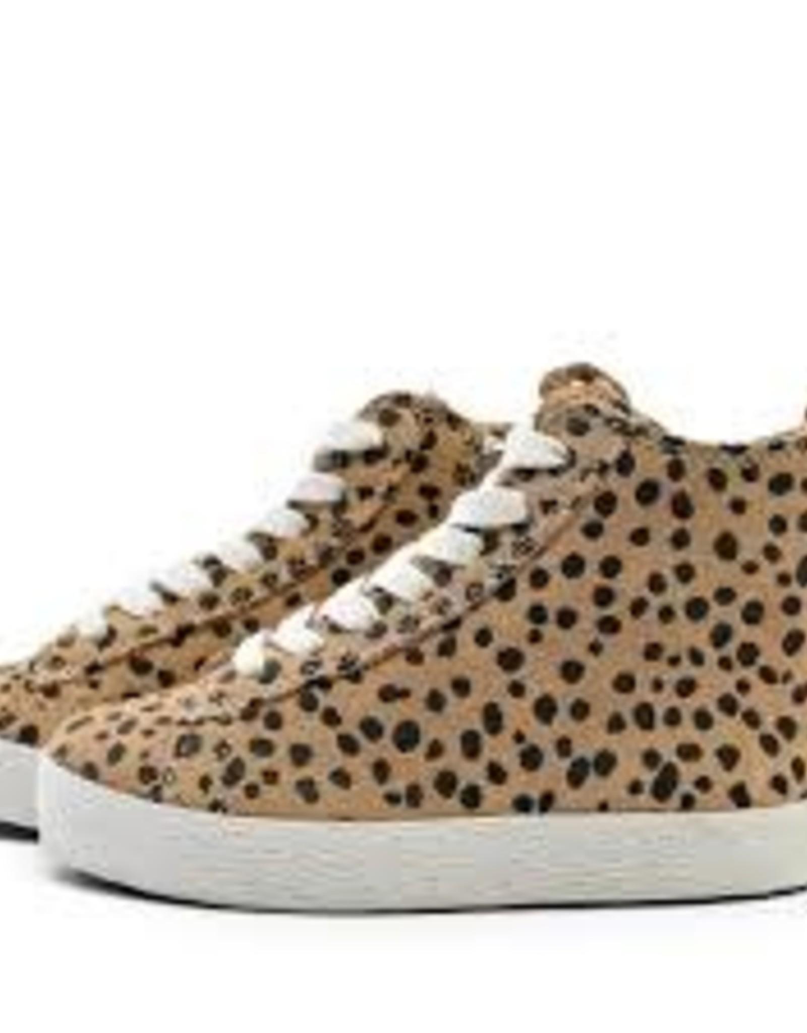 Piper Finn Piper Finn High Top Sneaker Cheetah