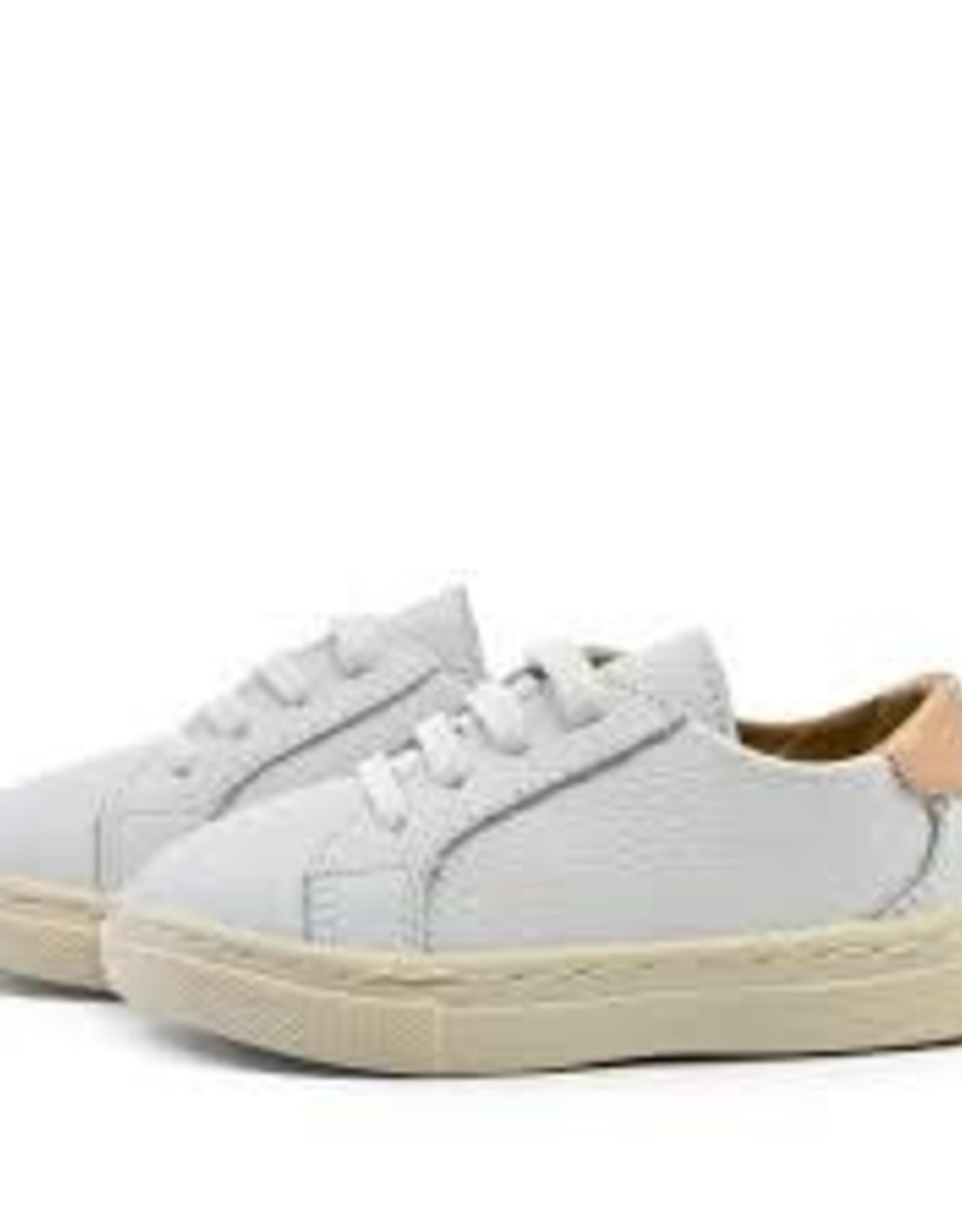 Piper Finn Piper Finn Low Top Sneakers White