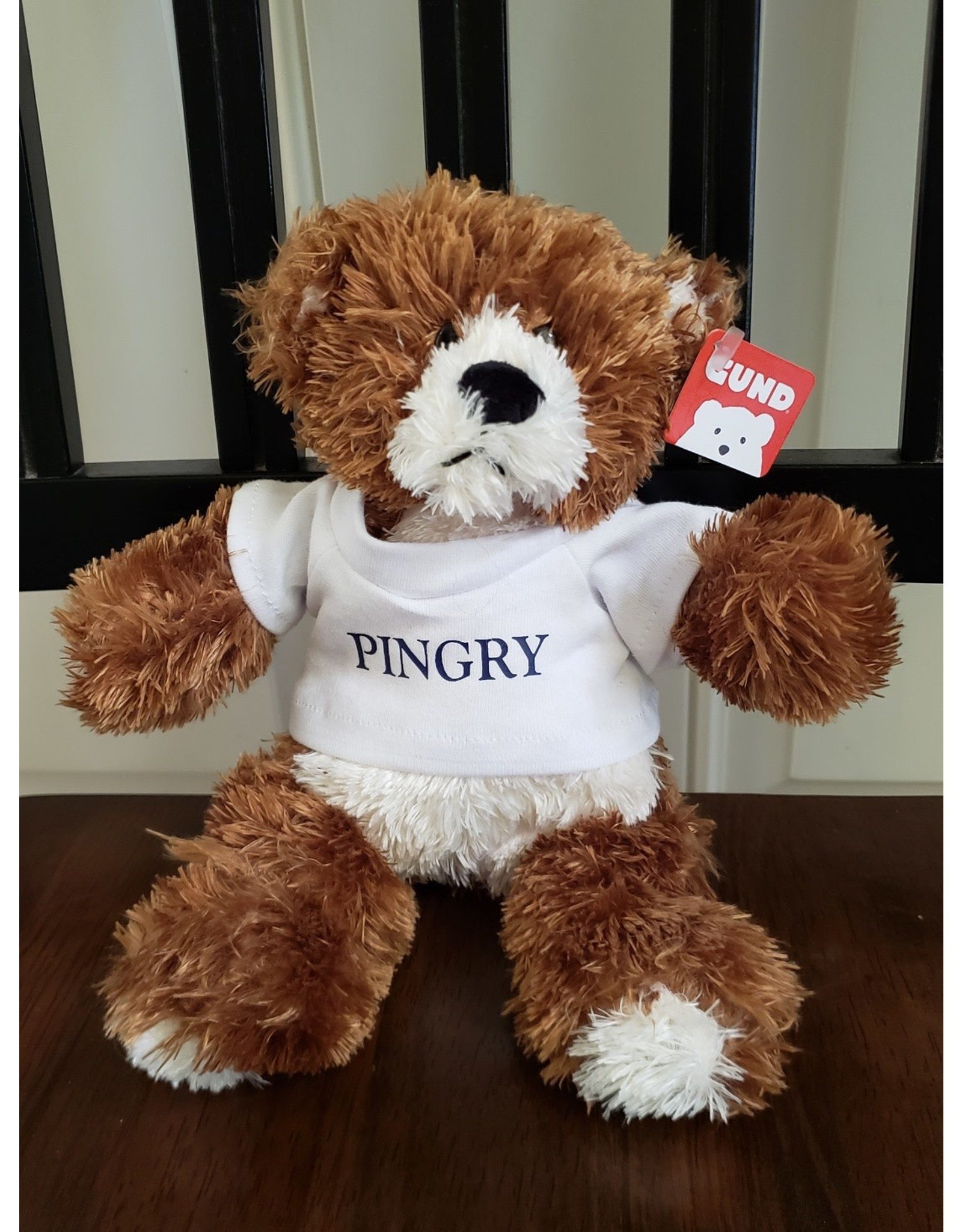 Teddy Bear-2020-with white t-shirt-9 inch