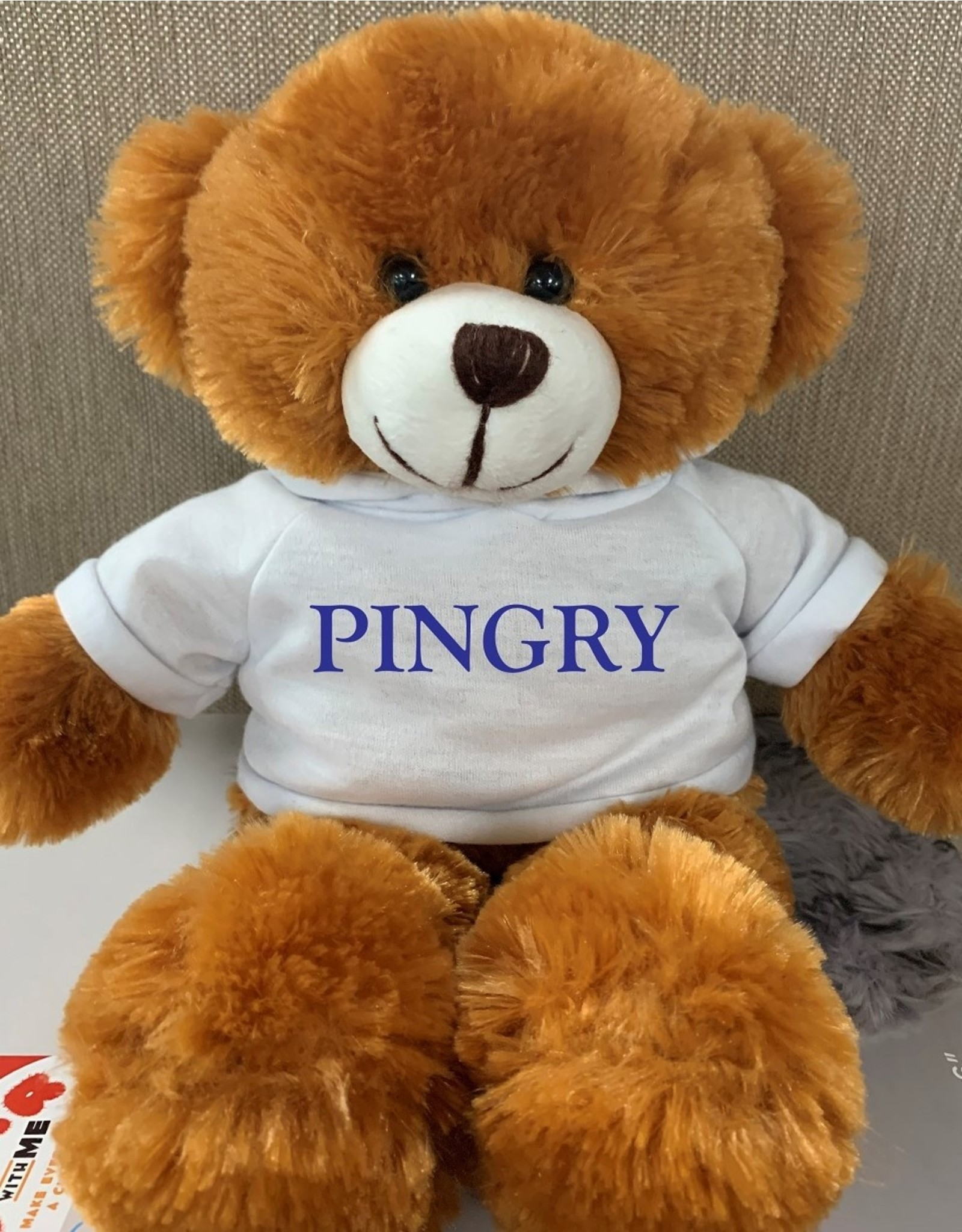 Teddy Bear-Pingry 2021-12 inch with white hoodie