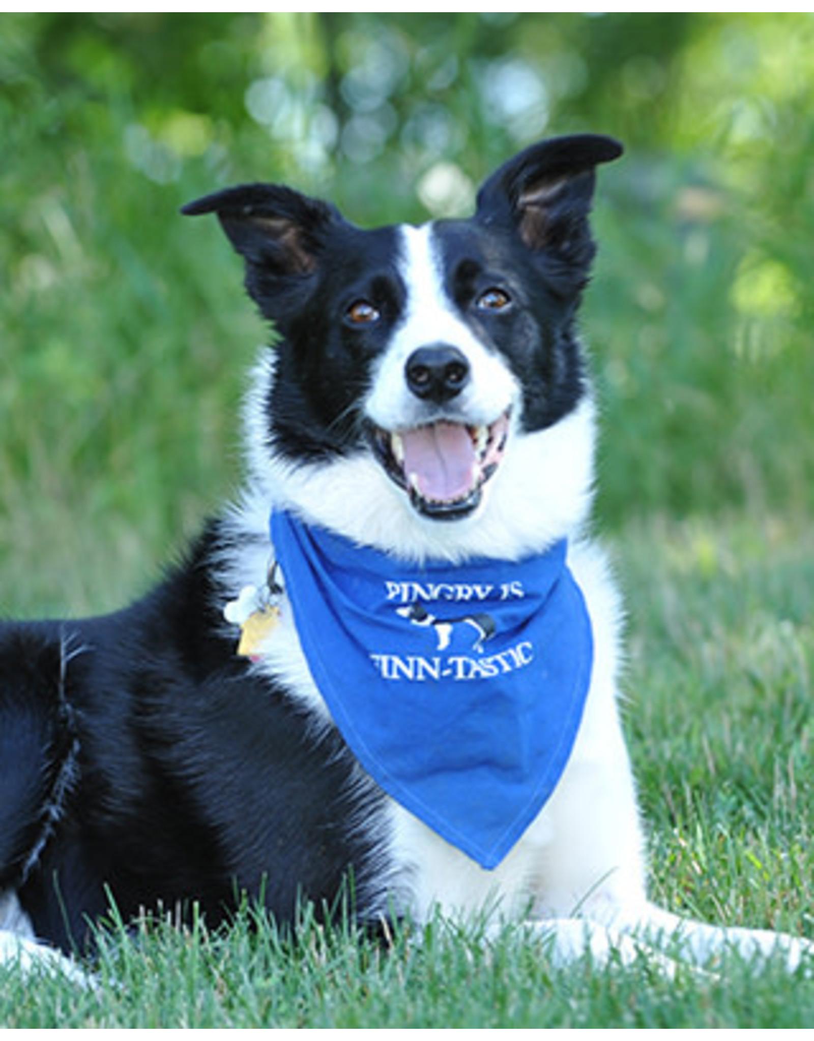Dog bandanna-Blue