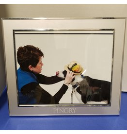 Harmony Picture Frame-8 x 10-metal