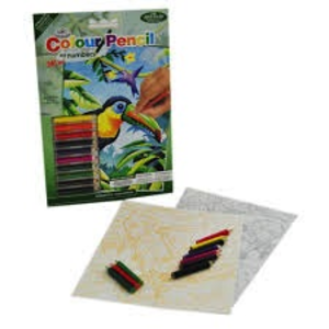 Royal (art supplies) . ROY Mini Pen By Number Trop. Birds
