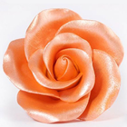 AmericaColor . AME (DISC) - AmeriMist 4.5oz Airbrush – Orange Sheen