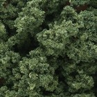 Woodland Scenics . WOO BUSHES CLUMP FOLIAGE MED GREEN