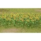 """Model Rectifier Corp . MRC Sunflowers 1"""" Hoscale 16Pk"""