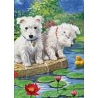 Royal (art supplies) . ROY Royal and Langnickel Colour Pencil By Number Westies Art Kits Nature Animals Calgary