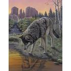 Royal (art supplies) . ROY Royal Brush Wolf Reflections Paint By Number Nature Animals Calgary