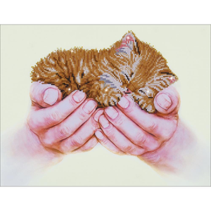 Diamond Dot . DDT Precious Kitten -  Diamond Art