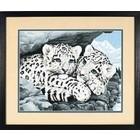 Dimensions . DMS Snow Leopard Cubs Pbn