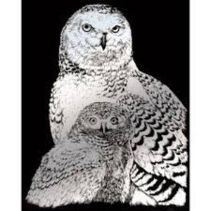 Royal (art supplies) . ROY Engrave Art Silver - Snowy Owl