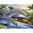 Royal (art supplies) . ROY Lg. PBN Dolphin Island